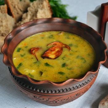 Первые блюда с грибами: рецепты приготовления с фото